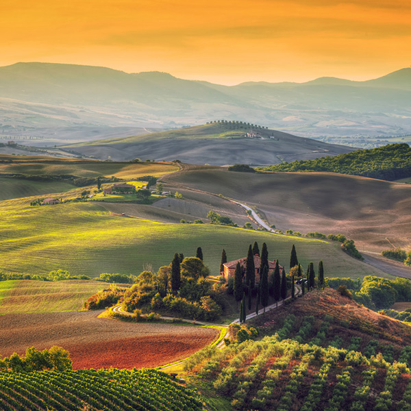 Tuscany landscape at sunrise. Typical for the region tuscan farm house, hills, vineyard.